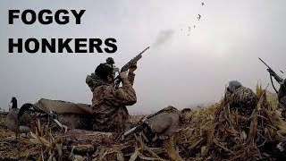 canada-honker-hunt-in-thick-fog-got-my-limit