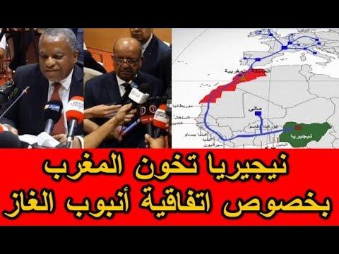 نيجيريا تنقـــلب على المغرب ..أنبوب الغاز سيمر عبر الجزائر وليس المغرب؟