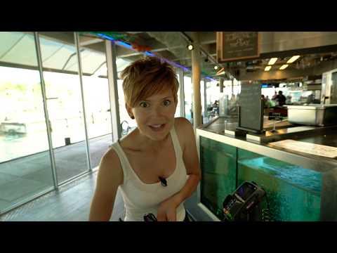 НЛО TV: ПІВНІЧНИЙ CHECK-IN | 15 ВИПУСК | Осло (Норвегія)