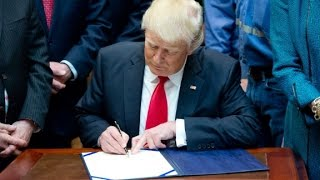 Amnesty report slams Trump, other leaders