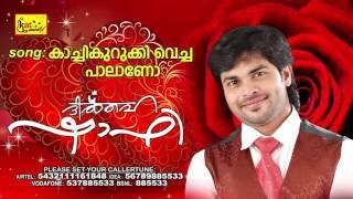 കാച്ചികുറുക്കിവെച്ച പാലാണോ | DIL HE SHAFI | Romantic Album Song | Shafi Kollam