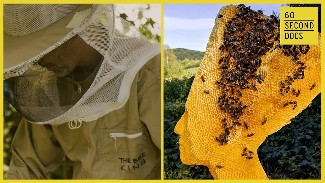 The Honeycomb Maestro's Incredible Beeswax Sculptures