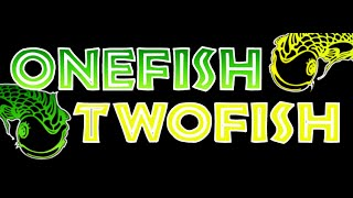 Onefish Twofish Acoustic Duo - VIDEO DEMO - Wagon Wheel