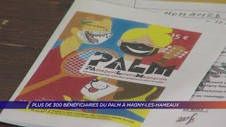 Yvelines | Plus de 300 bénéficiaires du PALM à Magny-les-Hameaux