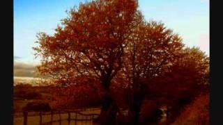 Benjamin Frankel, Symphony No.3 (1/2)