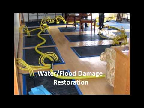 Indoor-Restore Property Repair and Restoration Services - Mold, Water and Flood Damage, Fire Damage