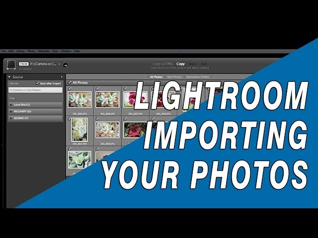 Lightroom for Photographers