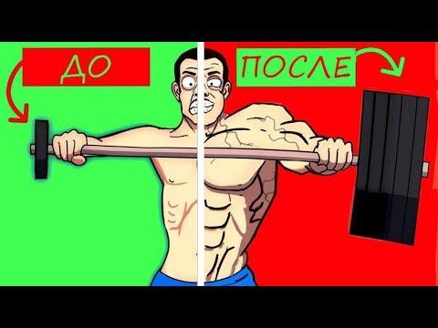 Как постоянно прогрессировать в наборе массы и силы