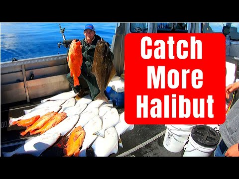 Halibut Fishing Rigs + How To Catch Halibut - (By Captain Cody)