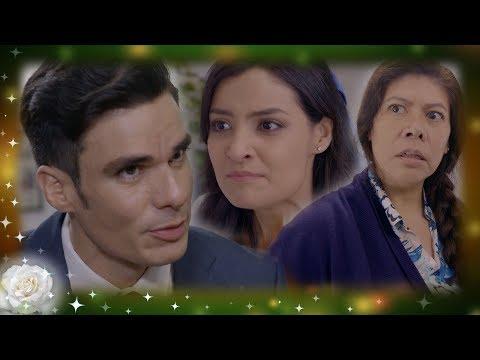 La rosa de Guadalupe: Ramiro pierde todo por ambición | Brilla como el oro