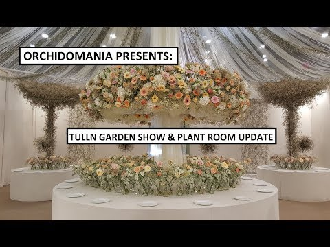 Orchidomania Presents: Tulln Garden Show And Plant Room Update
