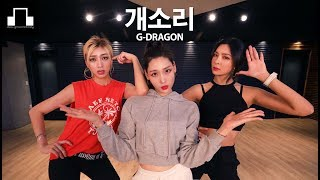 G-dragon - 개소리 (Bullshit) / dsomeb Choreography & Dance