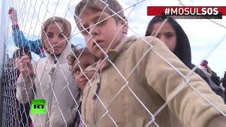 «Мы жили в аду» — иракцы бегут из Мосула под перекрёстным огнем