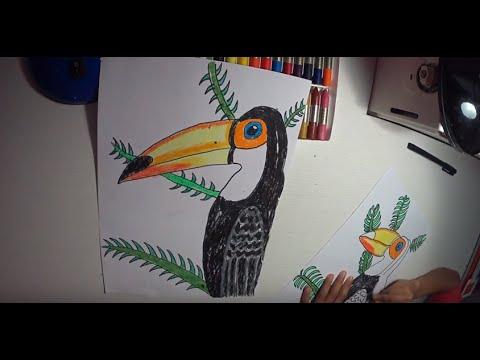 Cómo Dibujar Un Tucán Paso A Paso Youtube