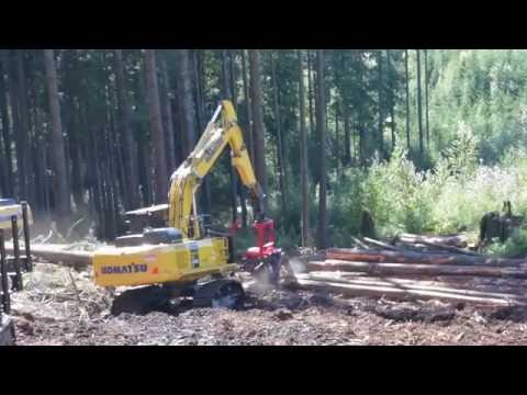 Komatsu 398 Processing Head handling medium diameter timber at DEMO 2016, Maple Ridge, BC