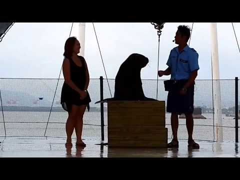 Will mummy kiss the Sea Lion on the Lips??