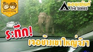 นอนเต็นท์ The Series : เขาใหญ่ 1/3 - นอนกางเต็นท์ที่ลำตะคองหน้าฝน เจอช้างป่า!! | CHOCO-DEMO