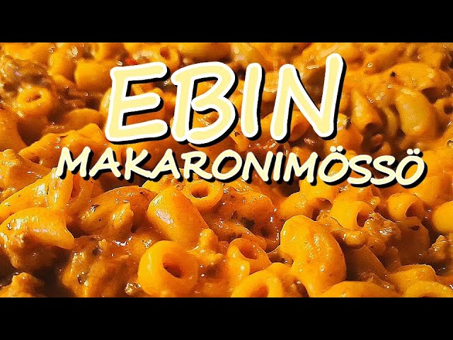 EBIN MAKARONIMÖSSÖ - Roizuvlogz