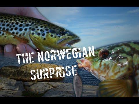 The Norwegian Surprise - Full version - English subtitles!