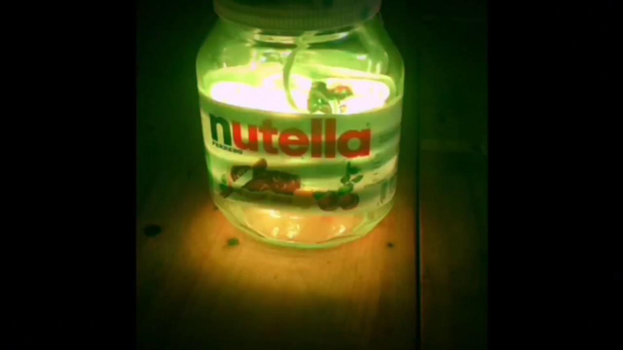 Lampada Barattolo Vetro : Come fare una lampada con un barattolo di nutella youtube
