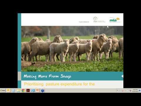 Making More from Sheep | Prioritising pasture expenditure