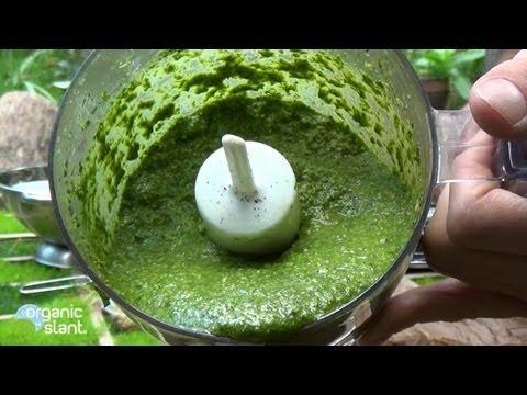 D.I.Y. Organic pesto 10-7-2013 | Organic Slant