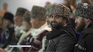 Жеребец карачаевской породы по кличке Бурак признан лучшим конем России