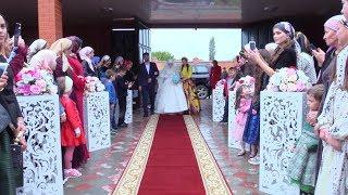 Свадьба Магомеда и Раяны. Бачи-Юрт(Чечня). Видео Студия Шархан
