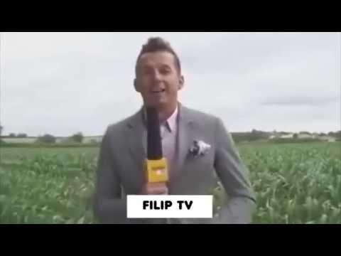 Hity Polskiego Internetu - Panie my z TVN #4