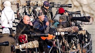 MILLIONS OF DOLLARS IN CAMERA GEAR IN ONE PLACE | Photographing Bald EAGLES
