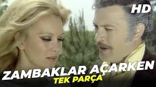 Zambaklar Açarken | Filiz Akın Eski Türk Filmi Full İzle (Restorasyonlu)