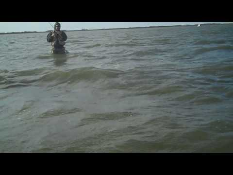 Randy Pyle's Personal Best Trout 28 8#+.mp4