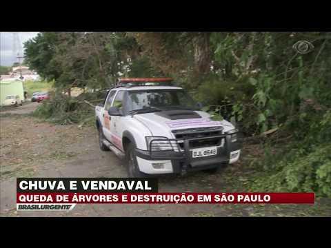 Chuva Causa Destruição Em São Paulo