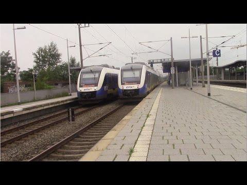 Langenhagen Mitte - S-Bahn Hannover mit ET 425 - LINT 41 (erixx) - Metronom - IC - ICE 2
