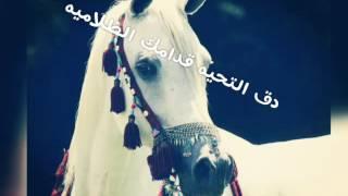 قصيده بصوت بدويه روعه