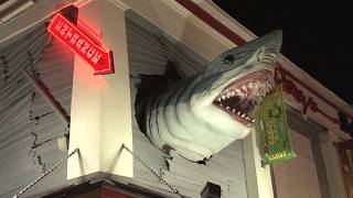 Baixar Shark Week!  World's Greatest Animals