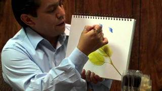 Repeat youtube video Miguel Rincon demonstrates the FAN-Dango, and Butterfly brushes.