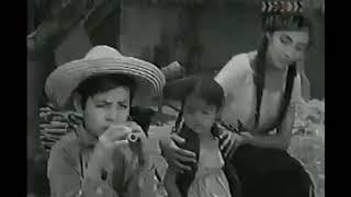 El Joven Juarez (El indio Juárez)