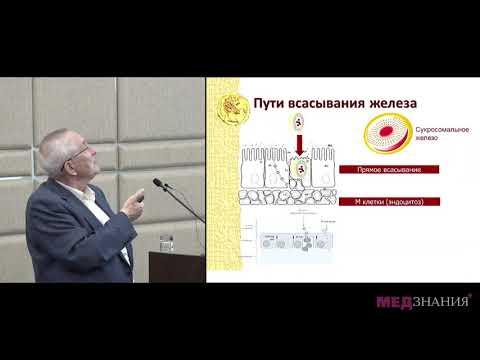 09 Новое в лечении железодефицитной анемии