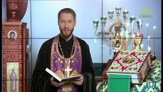 Читаем Евангелие вместе с Церковью. 7 марта 2020