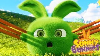 Videos For Kids | Sunny Bunnies SLINGSHOT | SUNNY BUNNIES | Funny Videos For Kids