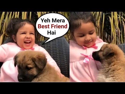 Ms Dhoni Daughter Ziva Dhoni Playing With Puppy
