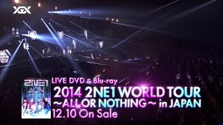 2ne1 - Live Dvd And Blu-ray 2014 2ne1... @ www.OfficialVideos.Net
