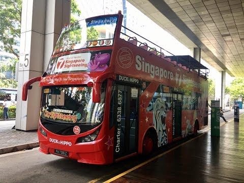 CITY SIGHTSEEING SINGAPORE Yellow Route