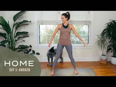 Home - Day 3 - Awaken | 30 Days of Yoga With Adriene