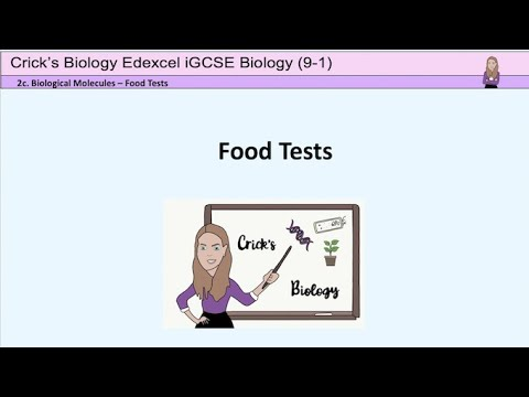 GCSE Biology Food Tests - testing for simple sugars, starch, protein and lipids #cricksbiology #GCSE