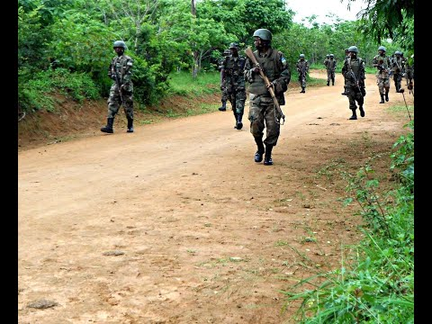 أخبار عالمية | #نيجيريا: مقتل 3 جنود في كمين لبوكو حرام شمال شرق البلاد