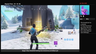 I got The Frozen Legends pack Fortnite