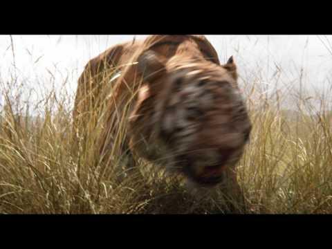 SIMBA EL REY LEÓN serie animada   Simba dibujos animados   Simba King Lion en español   EP. 18 from YouTube · Duration:  26 minutes 1 seconds