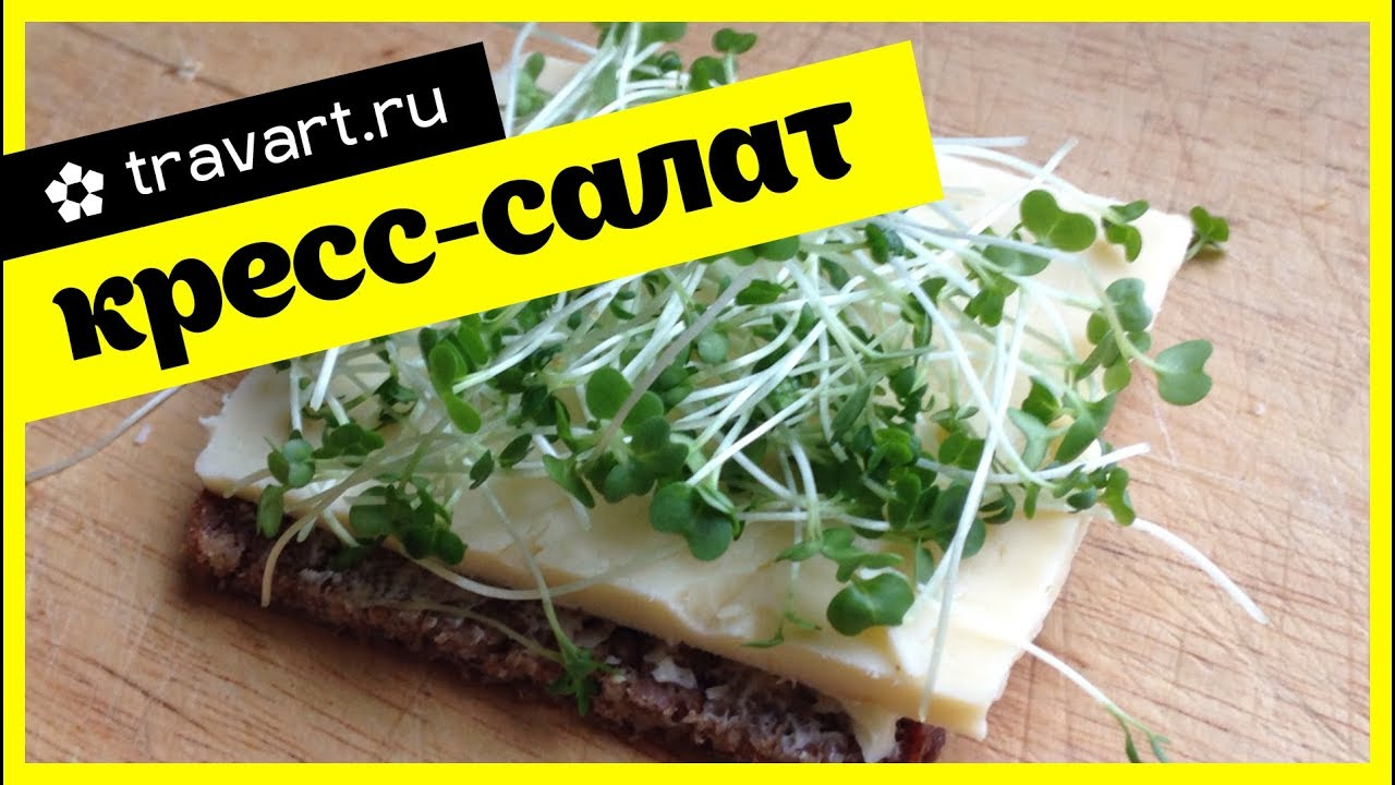 Салат на бутерброде — pic 5